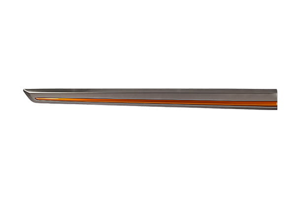 Body Side Moulding  - Orange Insert (Silky Silver) | Wagon R